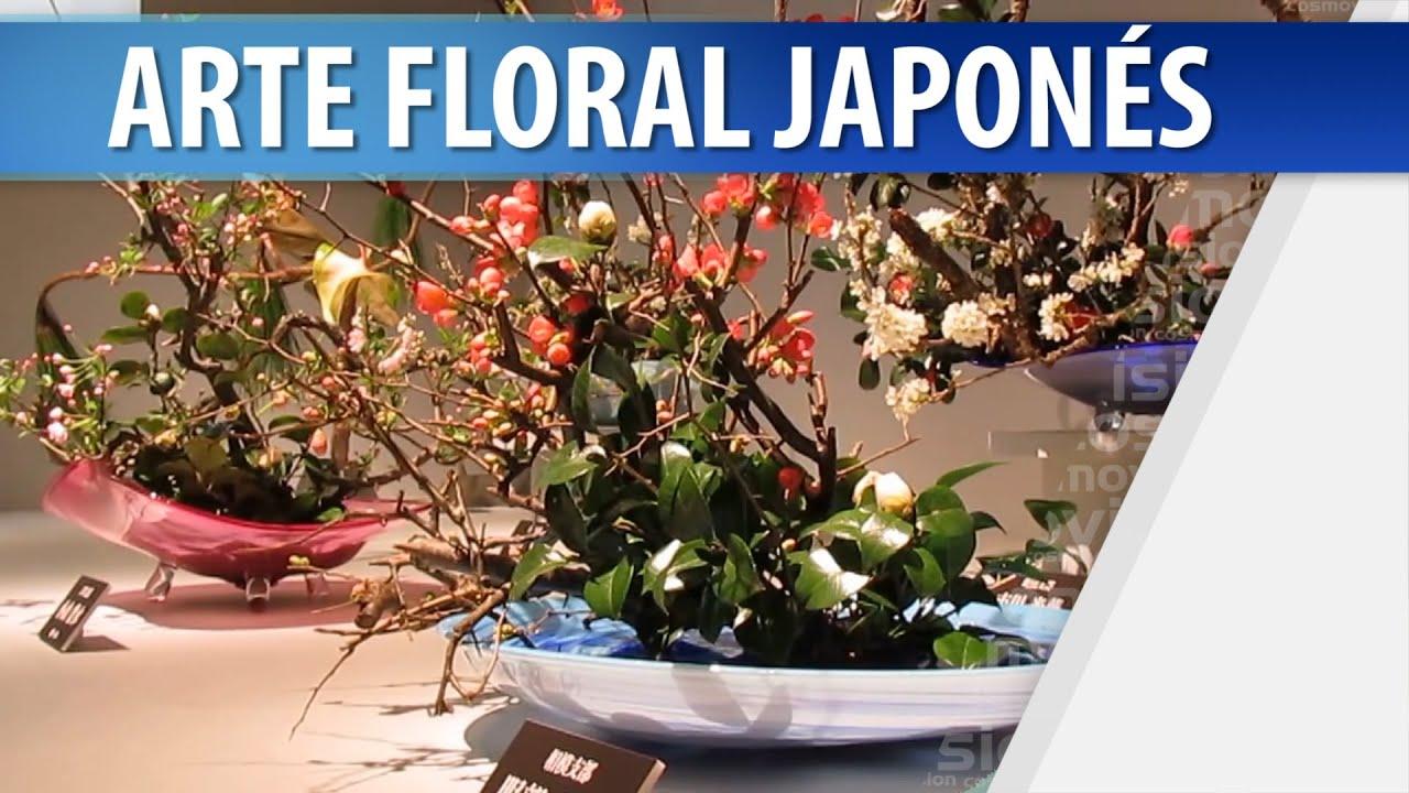 Aparador Com Gavetas Para Quarto ~ Arte Floral Japones Cómo se Hace el Ikebana YouTube
