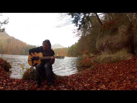 Njosnavelin Sigur Ros  12 String Acoustic Fingerstyle Guitar Solo  Helmut Bickel