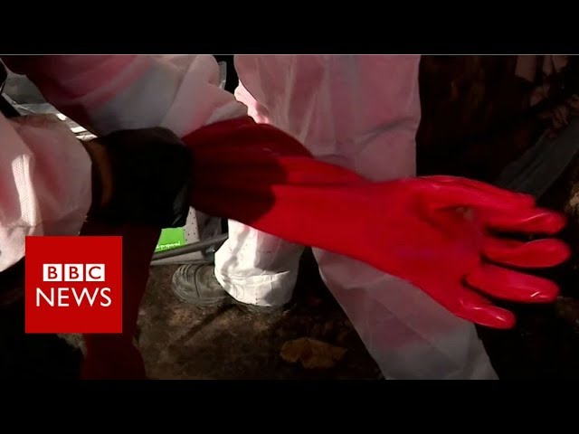 How do you clear out a fatberg? - BBC News