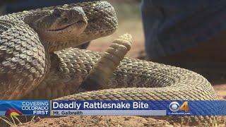 Rattlesnake Activity Forces Shutdown Of Popular Hiking Trail