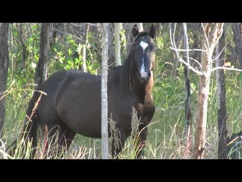 Bowling Green Bay National Park