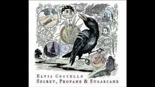Hidden Shame - Secret, Profane & Sugarcane