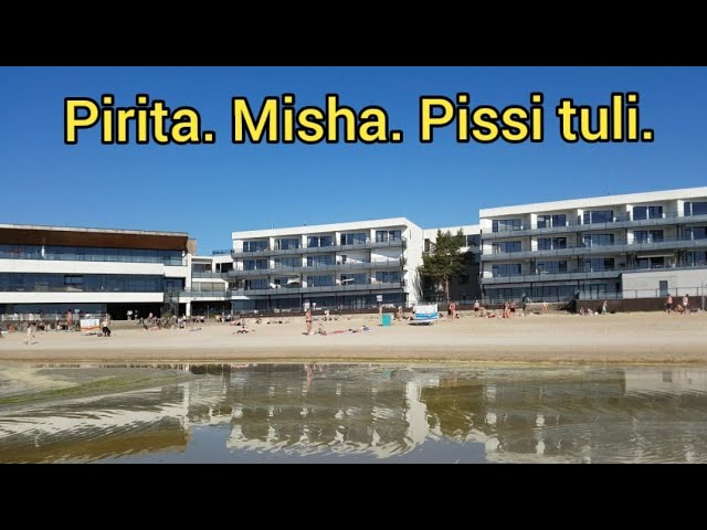 Pirita. Misha. Pissi tuli. Eesti. Tallinn. Эстония. Таллинн.