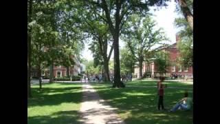 Harvard University 8