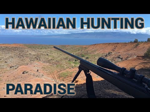 The Often Overlooked Hunting Paradise Of Hawaii