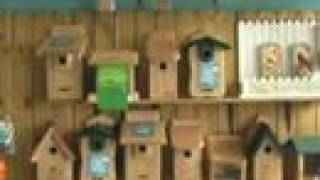 Nesting Boxes for Birds