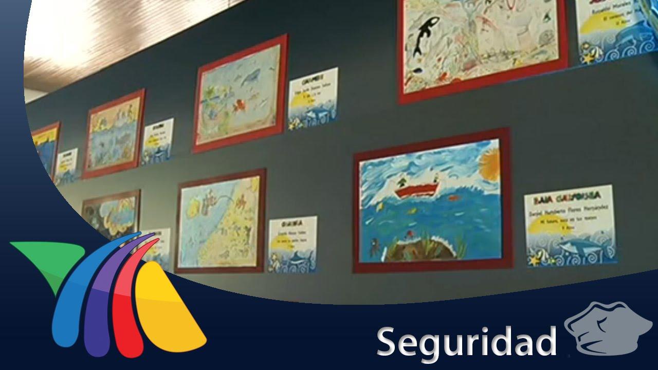 Ganadores Del Concurso El Nino Y La Mar Noticias Youtube
