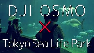 Tokyo Sea Life Park×DJI Osmo【葛西臨海公園 水族館】2016-7-11