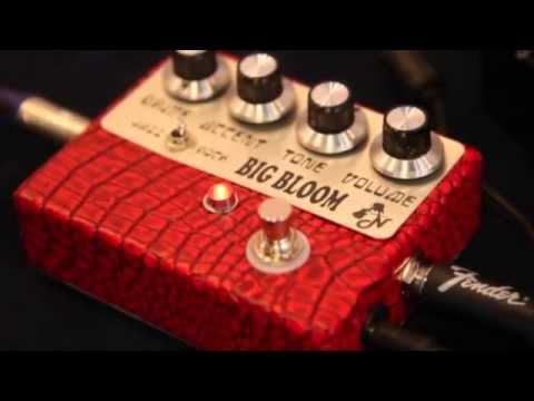 Amplified Nation : Big Bloom Overdrive : By Guitar Passion Thailand