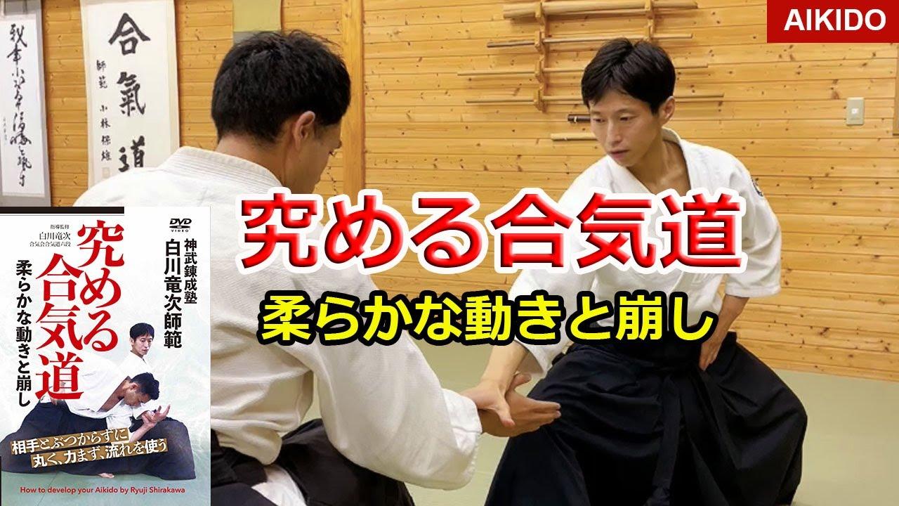 New DVD released! Amazing Aikido Volume 3 - Ryuji Shirakawa