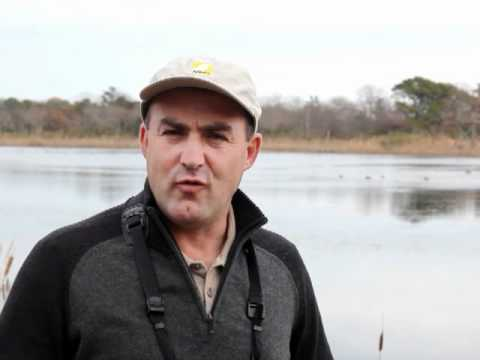 Richard Crossley - Becoming a better birder