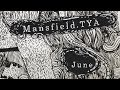 Capture de la vidéo Mansfield.tya - Pour Oublier Je Dors (Official Audio)