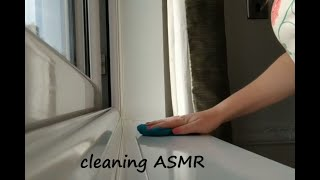 cleaning ASMR