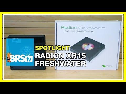 Spotlight on the Freshwater Radion XR15 for a Refugium | BRStv