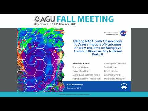 2017 Fall Meeting - NH33E: Ecological and Remote Sensing Perspectives of the 2017 Atlantic...