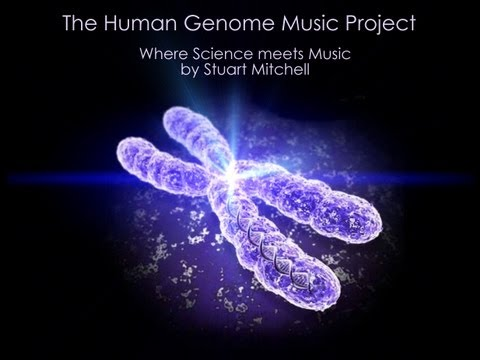 THE HUMAN GENOME MUSIC PROJECT - CHROMOSOME 1