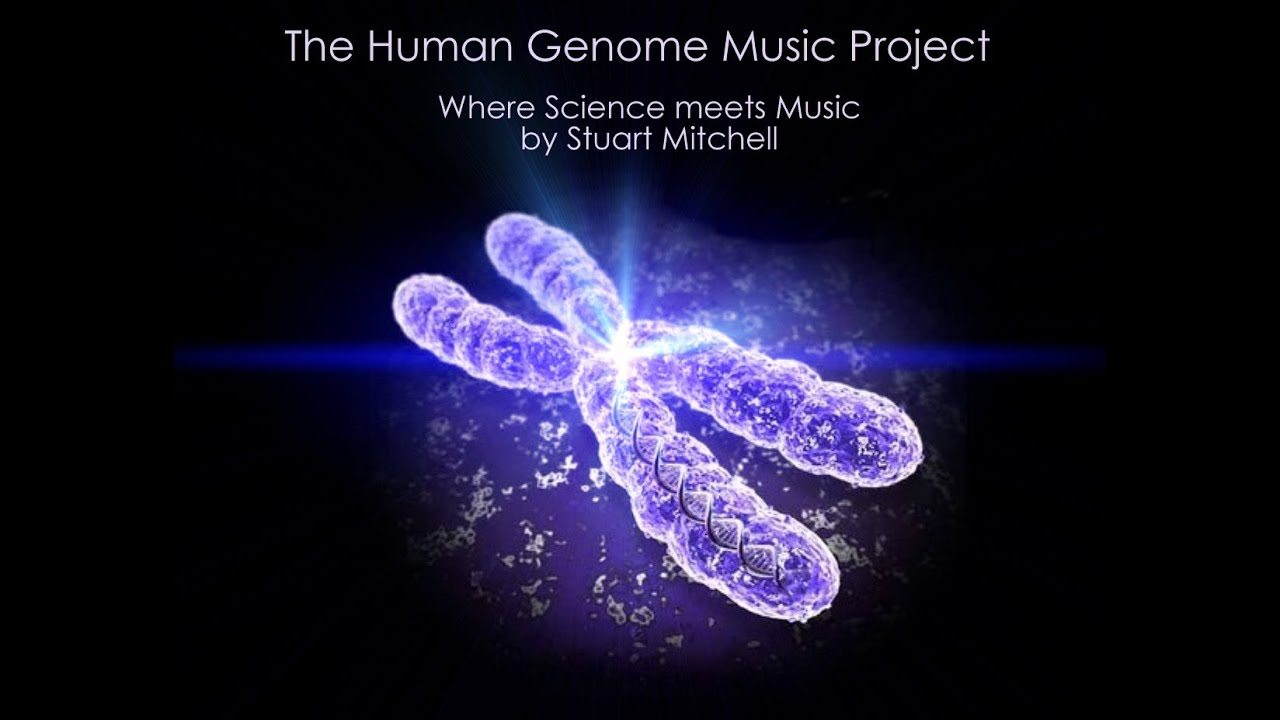 THE HUMAN GENOME MUSIC PROJECT - CHROMOSOME 1 - YouTube