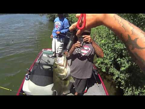 Bass And Northern Pike Fishing At Wolf Lake