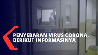 Jakarta, kompas.tv - mengenai penyebaran virus corona, wilayah sebarannya meliputi sejumlah negara seperti tiongkok, hongkong,thailand, macau, australia, jep...