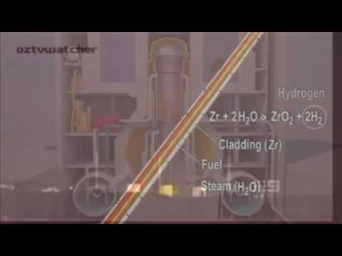 Fukushima-Daiichi Nuclear Disaster (OCE 3014, Group 5 Project 1)