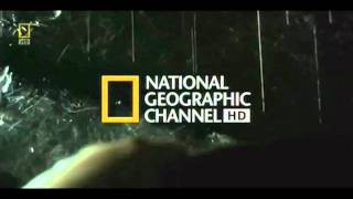 It Takes Over You - National Geographic HD Theme Song