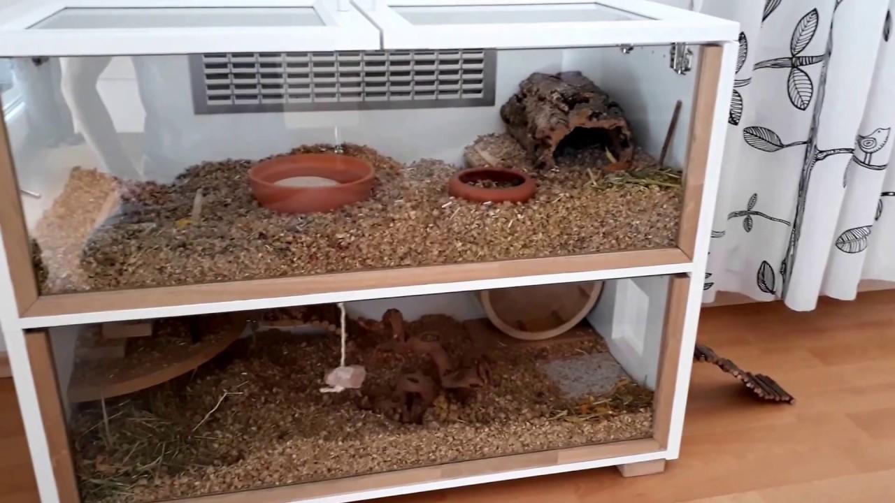 Diy Hamster Cage Ikea - #traffic-club