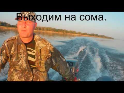 ловля сома на волге с лодки