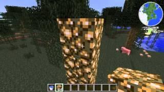 Minecraft วิธีทำประตูไปสวรรค์ 1.2.5