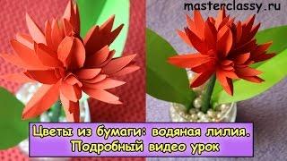 Paper tutorial. Red water lilac. Цветы из бумаги: водяная лилия. Подробный видео урок