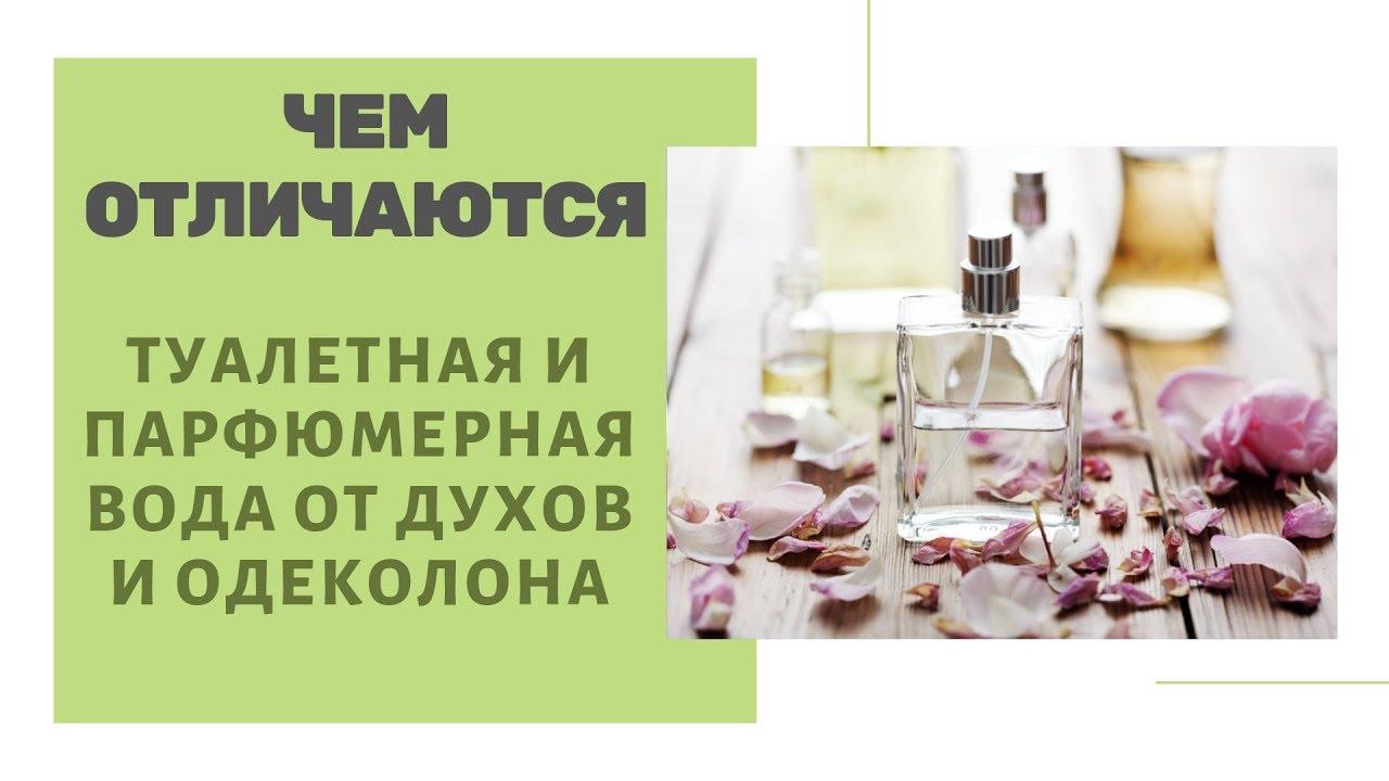 Чем отличается туалетная вода от парфюмерной воды