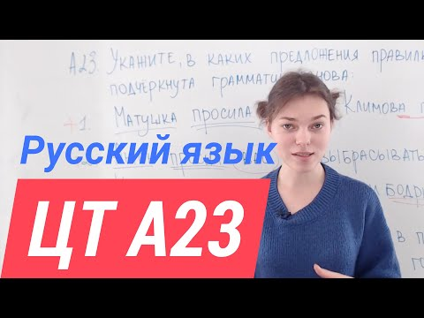 ЦТ А23. Грамматическая основа