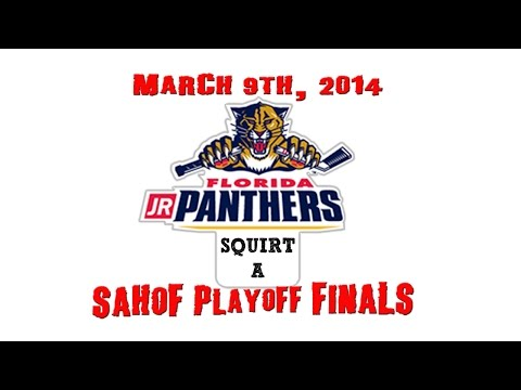 SAHOF Playoff Finals_Jr Panthers vs Jr Bulls_03-09-2014_Squirt A