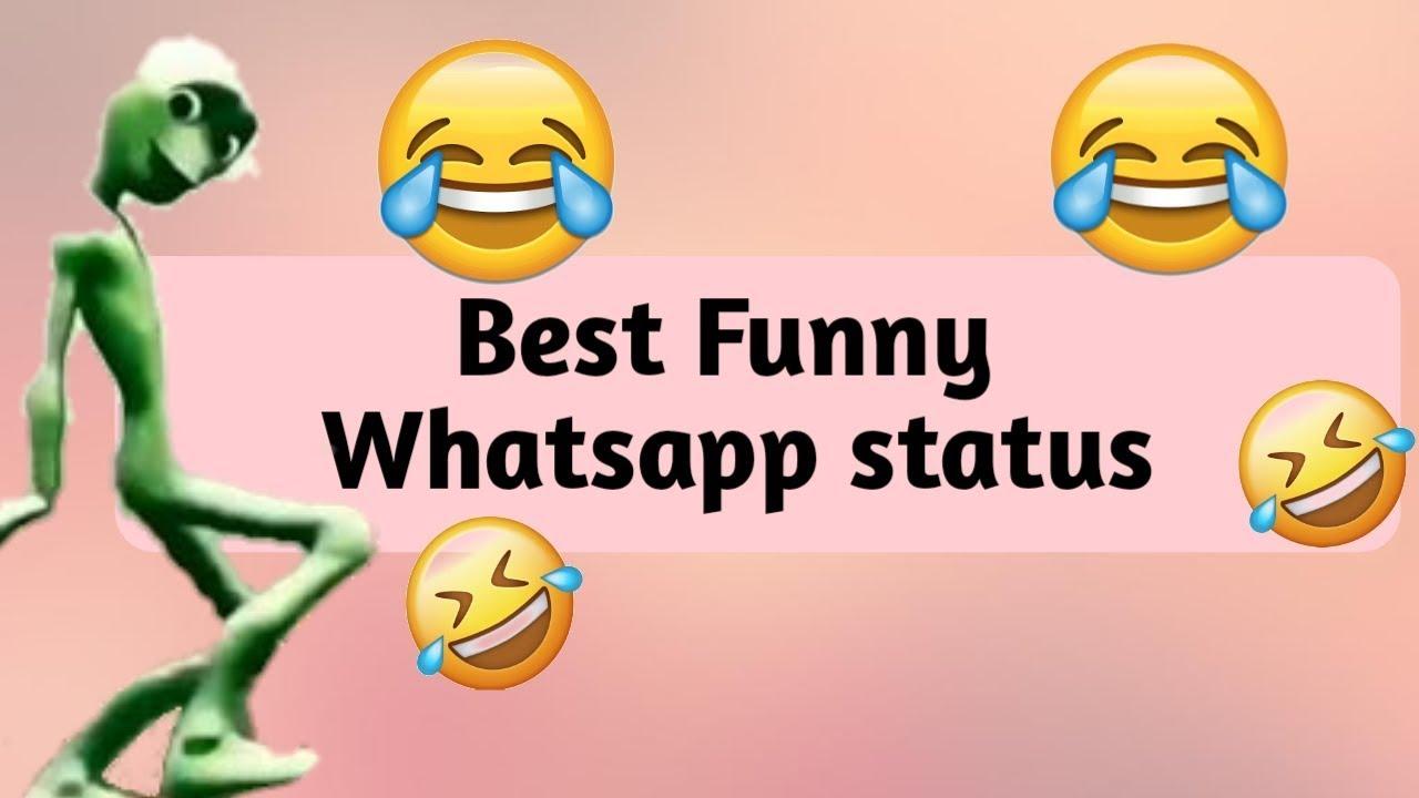 funny videos 2019 whatsapp download free
