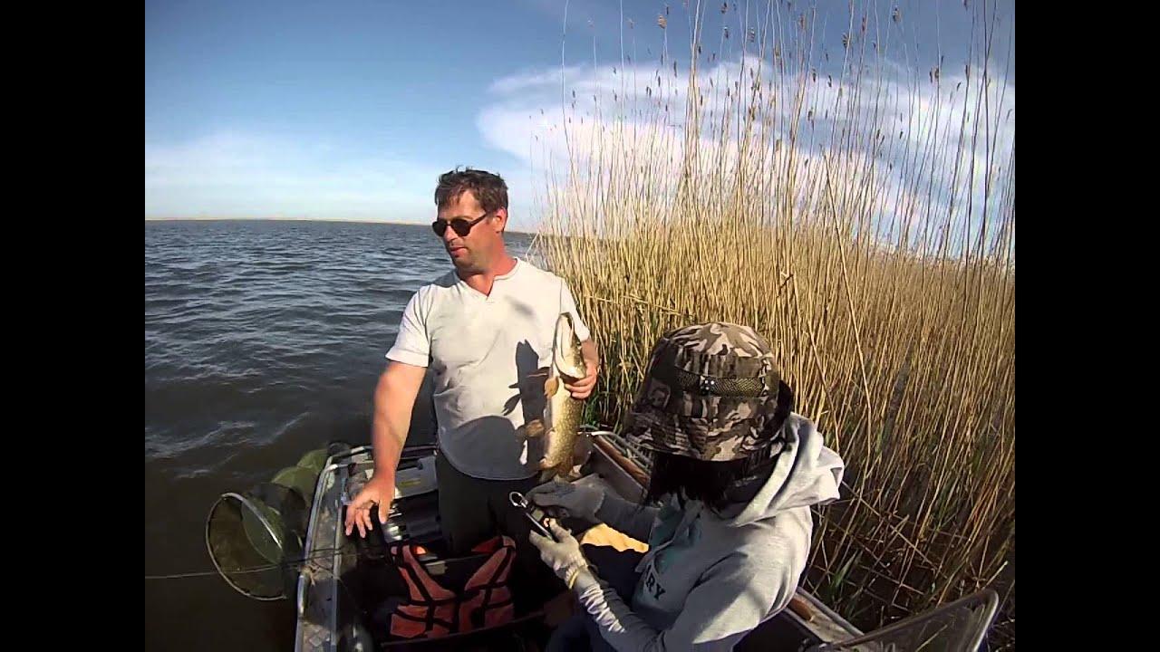 видео рыбалка в астрахани бесплатно