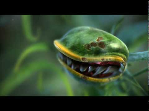 The Garden Animation Reel 2010