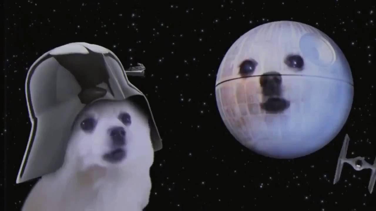 Wars Dogs Star Reservoir