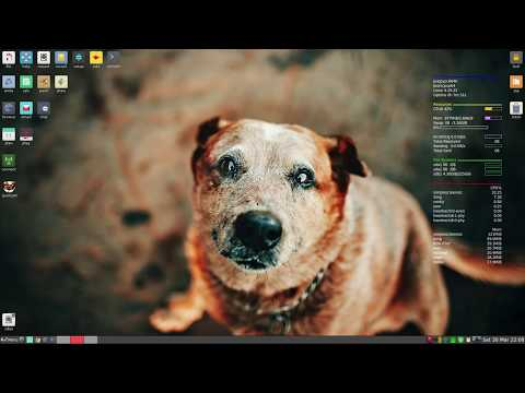 Repeat Puppy Linux 8  Pup Is Now Bionic  !! by sneekylinux