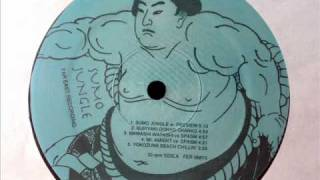 Soichi Terada - Yokozuna Beach Chillin - Sumo Jungle Far East Recording