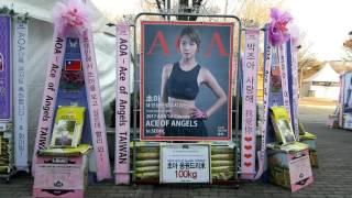 그룹 에이오에이(AOA) 콘서트 'ACE OF ANGELS IN SEOUL' 초아 응원 쌀드리…