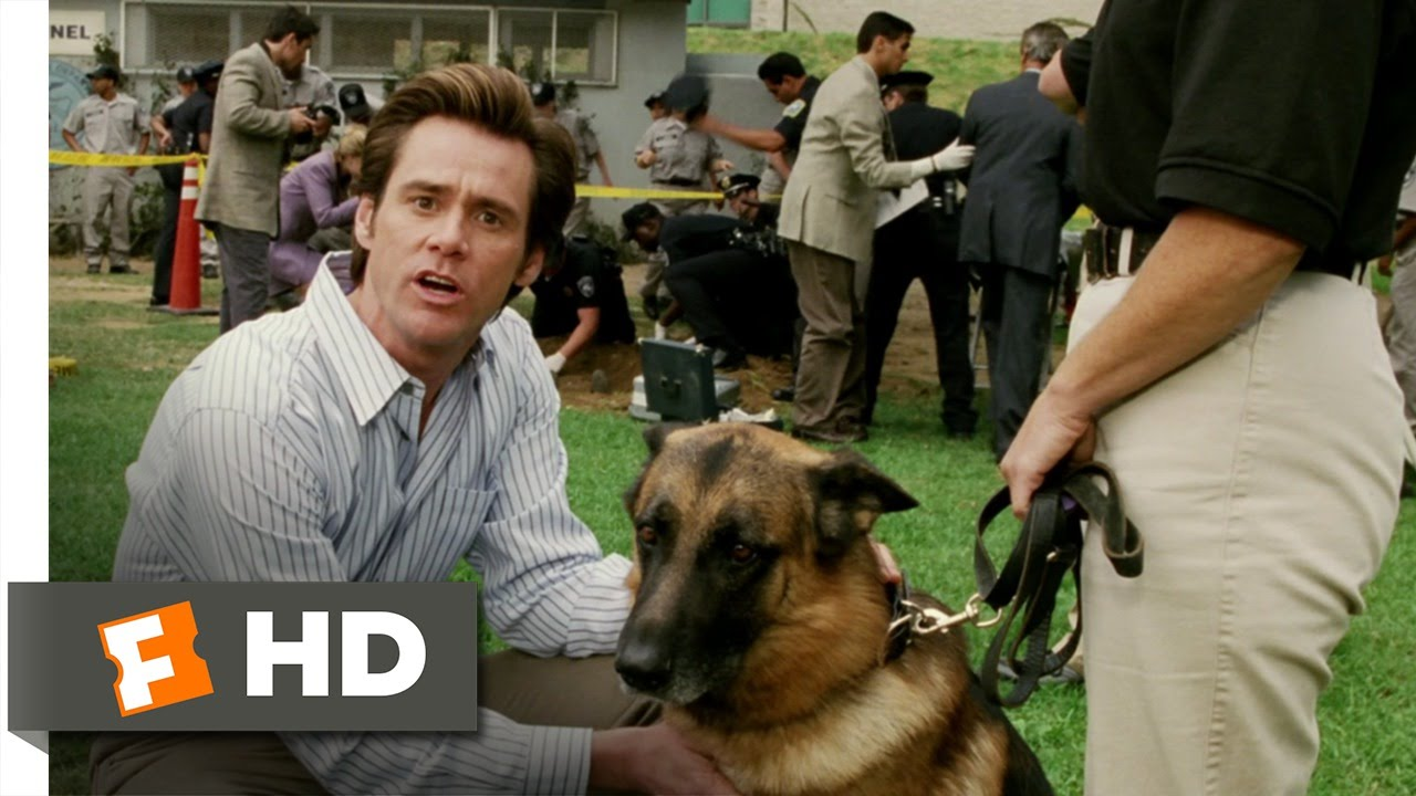 Download Bruce Almighty (5/9) Movie CLIP - Bruce Gets His Job Back (2003) HD