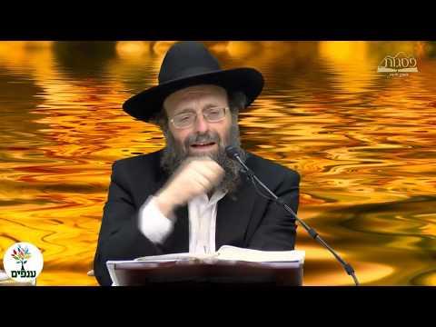 אהבת תורה - הרב יצחק גולדווסר HD