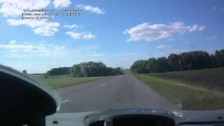 Хищные птицы на дороге