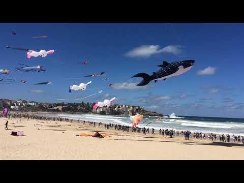 Sydney wind festival