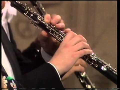 Symphonie Nr. 2 - Charles Ives - BR-Symphonieorchester - Leonard Bernstein (VHS)