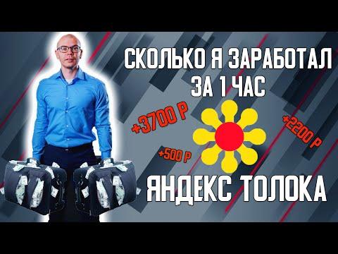 Сколько мне удалось заработать на Яндекс Толока за 1 час