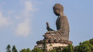 The BIG Buddha Statue in Hong Kong! Surrounded by Cows!