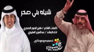 شيلة بني صخر عبدالعزيز العليوي 2016