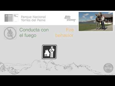 Recomendaciones para visitar Parque Nacional Torres del Paine