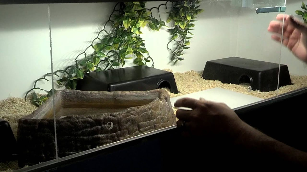 Diy Sliding Doors And Track For Reptile Enclosure Youtube
