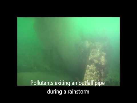 Storm Drain Technologies, LLC - Barnegat Bay Cleanup